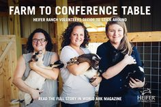 Heifer Farm is a 1,200 acre working farm in Perryville, Arkansas. Its secret? It is staffed by a group of dedicated passionate, residential volunteers. Read how three different Heifer Ranch alumnae transitioned from volunteer farm work to office life at the Headquarters of Heifer International.