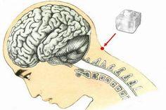 Coloque um cubo de gelo neste ponto entre a cabeça e o pescoço e isto vai acontecer! | Cura pela Natureza