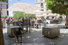 Las tres manolas -  http://lastresmanolas.com - terraza or bar - Opera