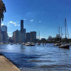 Beautiful day in Brisbane. Walking  through the City Botanic Gardens. #rivercity #walk #citylife #brisbanelife