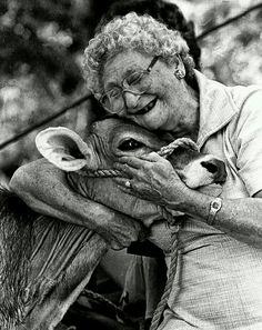 """""""To each his own,"""" said the woman as she kissed her cow. """"Old Gal and her cow"""" Photo by Phil Grout~ ♛ Cow Photos, Cow Pictures, Happy Pictures, Animal Pictures, Fotografia Retro, Farm Animals, Cute Animals, Foto Poster, Amor Animal"""