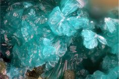 Tyrolite Ca2Cu9(AsO4)4(CO3)(OH)8·11H2O Locality: La Amorosa mine, San Rafael claim, Villahermosa del Rio, Castellón, Valencian Community, Spain Field of View: 1.4 mm Jose Miguel Sola Fdez.'s Photo Tyrolite is a hydrated calcium copper arsenate carbonate mineral. It is a secondary mineral formed by the weathering of associated copper and arsenic minerals. It has a Mohs hardness of 1.5 to 2.