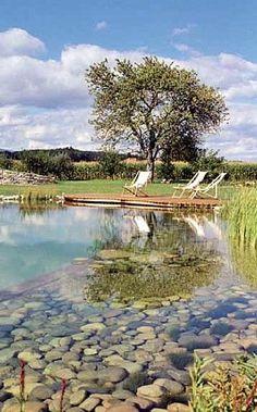 Would you create a swimming pond? Its a pool and a pond Swimming Pool Pond, Natural Swimming Ponds, Natural Pond, Pond Design, Landscape Design, Design Fonte, Farm Pond, Garden Pond, Ponds Backyard
