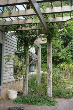 Grape Arbor Plans   grapearbor