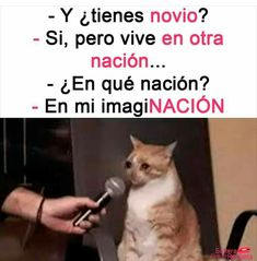 JAJAJAJA😂😂😂😂😂😂😂😂😂😂😂😂😂😂 Pinterest Memes, Stranger Things Netflix, Spanish Memes, Wtf Funny, Cat Memes, Words Quotes, Funny Images, Funny Quotes, Sad