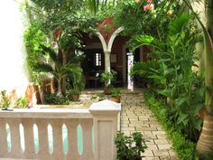 FREEDOM IN FRENCH STYLE | Real Estate in Yucatan - Mayan Living of Merida, Mexico