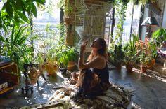 Plants and Lighting. #plants #indoorjungle #houseplants