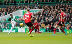 The Best Pictures from Celtic v Dundee - Daily Record