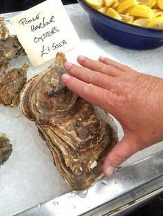 Borough market oysters
