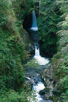 Cantabria, Spain  Besaya Bosque