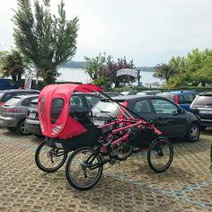 Parking traffic appeal