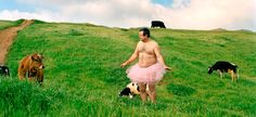 The Tutu Project is awesome and raises money for breast cancer.  What an awesome husband he is!