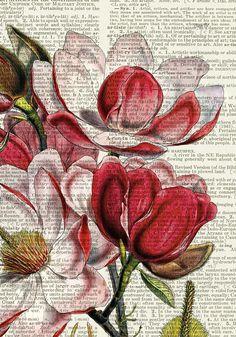 Varietats: Vintage Dictionary Art Prints by FauxKiss