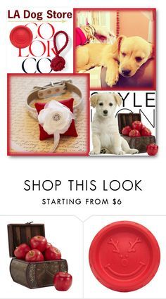 """""""LA Dog Store"""" by ladogstores ❤ liked on Polyvore featuring Lauren Conrad, Nearly Natural and Lands' End"""