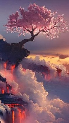 Fuji Volcano, Japan Cherry Blossom