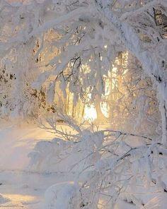 Beautiful! (makes me think of Narnia)