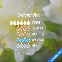 Serene Bloom - Essential Oil Diffuser Blend- Try barefūt Essential oils today. organically grown, ethically produced and free from chemicals or pesticides. Our oils do not contain fillers, additives, or any other type of dilution. Essential Oil Scents, Essential Oil Perfume, Essential Oil Diffuser Blends, Essential Oil Uses, Doterra Essential Oils, Doterra Blends, Perfume Oils, Living Oils, Young Living
