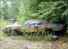 "1970 Dodge Charger RT - ""I found this Charger close to home. It's a real R/T, Abandoned Cars, Abandoned Places, Abandoned Vehicles, Junkyard Cars, Dodge Charger Rt, Cool Old Cars, Car Barn, Rust In Peace, Rusty Cars"