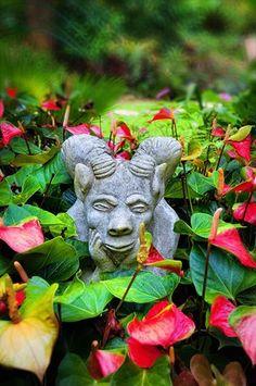 Hunte's Gardens - Barbados, West Indies, #Caribbean Islands