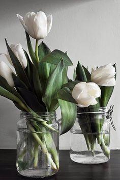 tulips in glass jars - Поиск в Google