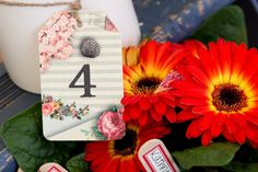 Garden party wedding in Devon image credits Evolve Photography (21)