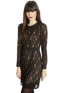 Lace Collar Longsleeve Dress