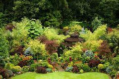 English garden for all seasons.