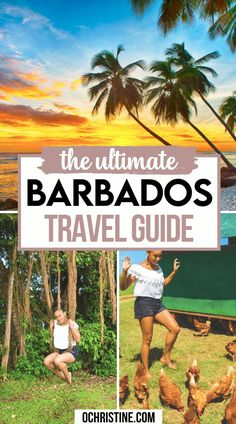 Barbados Travel, Amazing Things, Dream Vacations, Outdoor Activities, Travel Photos, Travel Guide, Travel Inspiration, Caribbean, Places To Visit