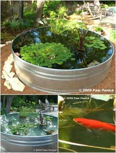 Garden Design Stock Tank Mini Yard Pond - One of my favorite things in the world to do is to work on my landscaping. Whether I'm planting flowers or involved in a huge DIY garden project, I just love being outside and improving Diy Garden, Planting Flowers, Landscaping Tips, Container Water Gardens, Backyard Landscaping, Backyard Garden, Ponds Backyard, Garden Fountains, Diy Water