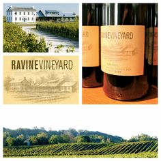 Ravine Vineyard Estate Winery - Featuring their wine at Meet Your Maker Winemakers Dinner, Ravine Vineyard Estate Winery will showcase their 2011 Estate Reisling. Paired with seared scallops on a bed of arugula and drizzled with warm vidal vinaigrette and peppercorns. This meticulously blended wine achieves refined flavors that display the truest reflection of the land, by exemplifying the soft sweetness of the Naigara Region. #RavineVineyard #MeetYourMaker #Niagara