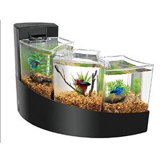Stylish desktop aquarium simplifies care for an easy and artistic way to display 3 betta fish (Betta splendens) at once. Aqueon Betta Falls Aquarium Kit lets you enjoy the calming presence of cascading water while admiring the natural beauty of betta. Betta Aquarium, Aquarium Terrarium, Aquarium Kit, Home Aquarium, Fish Aquariums, Mini Aquarium, Corner Aquarium, Aquarium Stand, Aquarium Hood
