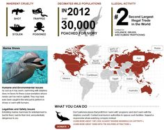Humane Society International: Dont Buy Wild Map [Infographic] :: Eat. Shop. Go Wild.: A Consumer's Guide to Wildlife-Friendly Living :: Get the Facts  Every year billions of animals are inhumanely captured and killed to provide for your entertainment, and to make products for you to buy here and around the world. It's called the international wildlife trade, and you can help stop it by avoiding products and experiences that come from these abused animals