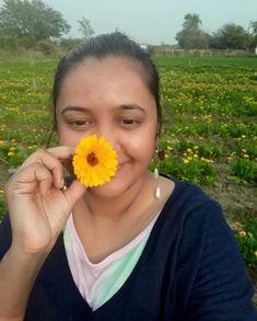 The calendula fields of Chhattisgarh, where botany meets beauty Green Revolution, Cash Crop, Natural Pesticides, June Bug, Organic Farming, Calendula, Medicinal Plants, Botany, Horticulture