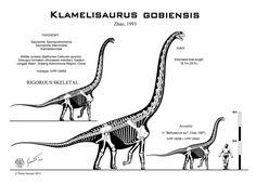 Klamelisaurus gobiensis skeletal by Paleo-King on deviantART