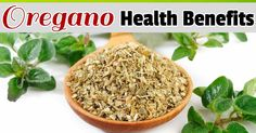 Not only is oregano used in cooking, but it also contains vitamins essential to the body -- here are its top five health benefits. http://articles.mercola.com/sites/articles/archive/2014/02/01/oregano-health-benefits.aspx