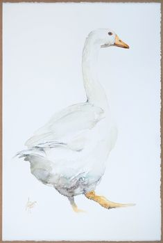 Andrzej Rabiega Watercolor Paper, Pet Birds, Artwork, Animals, Watercolors, Size 14, Image, Style, Products
