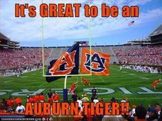 It's Great to be an Auburn Tiger!!