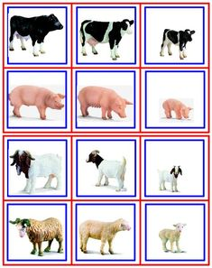 1 million+ Stunning Free Images to Use Anywhere Animal Activities, Montessori Activities, Educational Activities, Preschool Activities, Farm Animals Preschool, Farm Animal Crafts, Preschool Education, Preschool Worksheets, Toddler Learning