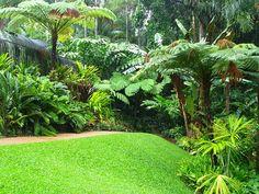 If you were looking for (tropical gardens), take a look below Small Tropical Gardens, Tropical Garden Design, Tropical Backyard, Tropical Landscaping, Small Garden Design, Landscaping Plants, Tropical Plants, Yard Design, Landscape Borders