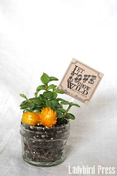 Personalized Printable Wedding Favor Tag - PDF - DIY - Let Love Grow Wild - Succulent on Etsy, $8.00