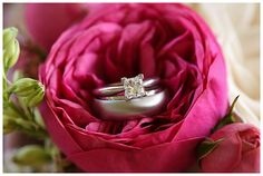 ring shot, wedding ring shot, wedding photography, wedding ring, wedding photography ideas  Asheville, NC Photographer. www.gvhphotographie.com