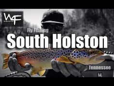 Wish4Fish is back on the water and back in Tennessee.  This time fly fishing on the South Holston otherwise known as the Soho.  I was fishing with Rob Coats of South Holston Angler.    There were a LOT of bugs coming off the water although hardly any risers.  The Sulphurs were popping off but it's still a little early to bring the fish up for them.  Although we did run into one super nice pod of risers.  I landed one and lost 2 (one was a HOG) and Rob lost one as well.