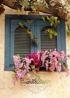 Window box and blue shutters Window Box Flowers, Balcony Flowers, Window Boxes, Flower Boxes, Window Sill, Old Windows, Windows And Doors, Exterior Windows, Balcony Window