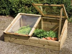 How to Use a Greenhouse or Cold Frame to Extend Your Growing Season - Garden and Happy Backyard Greenhouse, Small Greenhouse, Greenhouse Plans, Pallet Greenhouse, Old Window Greenhouse, Dome Greenhouse, Greenhouse Wedding, Cold Frame Gardening, Gardening Tips