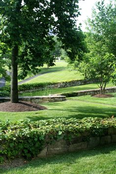 Check out why commercial #landscaping is so important for your business or company! Share your thoughts!   Arlington, VA   Chapel Valley Landscape Company