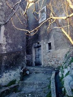 Old and forsaken - island of Mljet, Croatia
