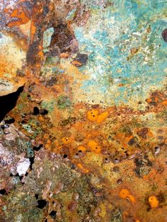 rust - color pattern inspiration