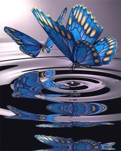 L'eleganza di una farfalla che danza con l'acqua .