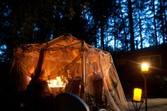 ...It was such a warm night that we wanted to eat outside, however we had to stay under the netting canopy to avoid mosquitos!