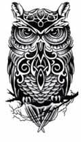 Resultado de imagem para owl tattoo male